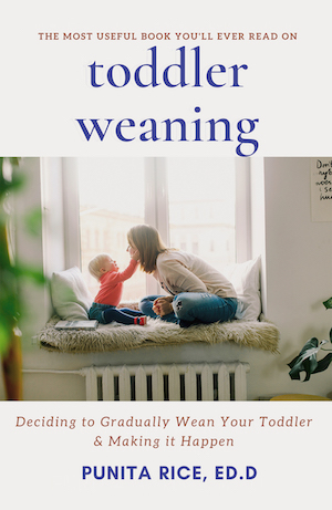 Toddler Weaning: Deciding to Wean your Toddler Gradually & Making it Happen by Punita Rice