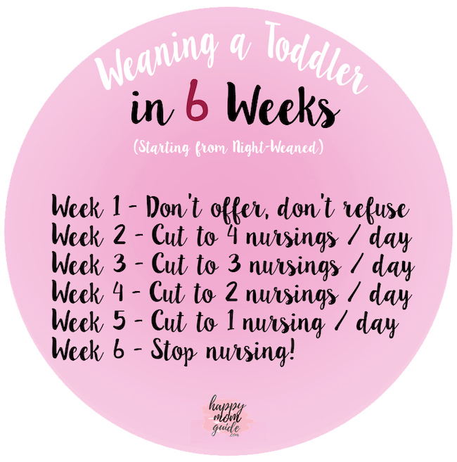 Toddler Weaning in 6 Weeks