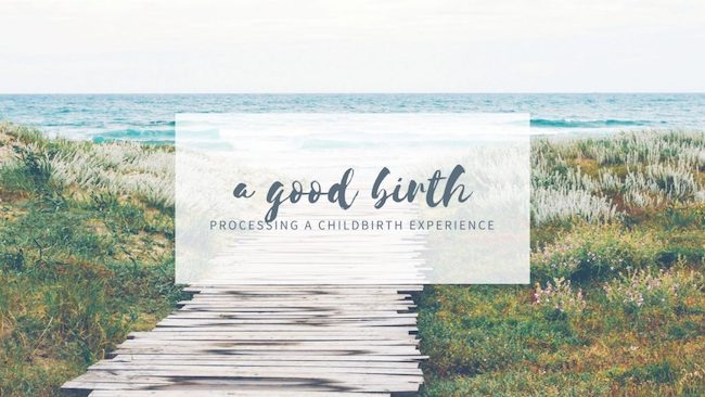 A Good Birth - Anne Drapkin Lyerly Review